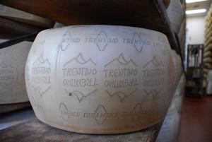 Formaggi tipici del Trentino