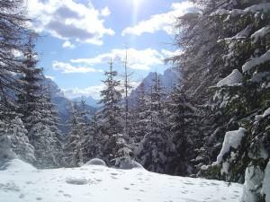 Zoldo vacanze sugli sci e settimane bianche